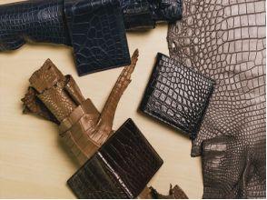 Изделия из крокодиловой кожи: все тонкости и преимущества
